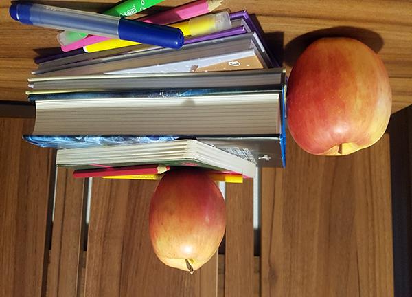 FLIPPED CLASSROOM – clasa răsturnată care sprijină învățarea